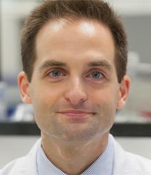 Dr. Bruno Paiva image